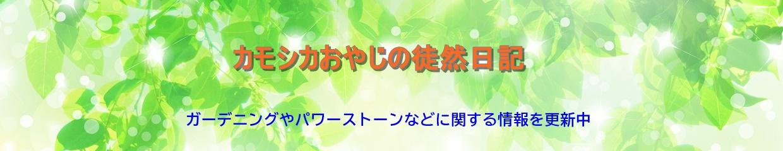 カモシカおやじの徒然日記