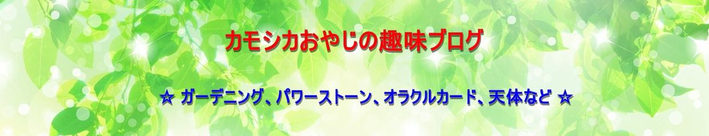 カモシカおやじの趣味ブログ